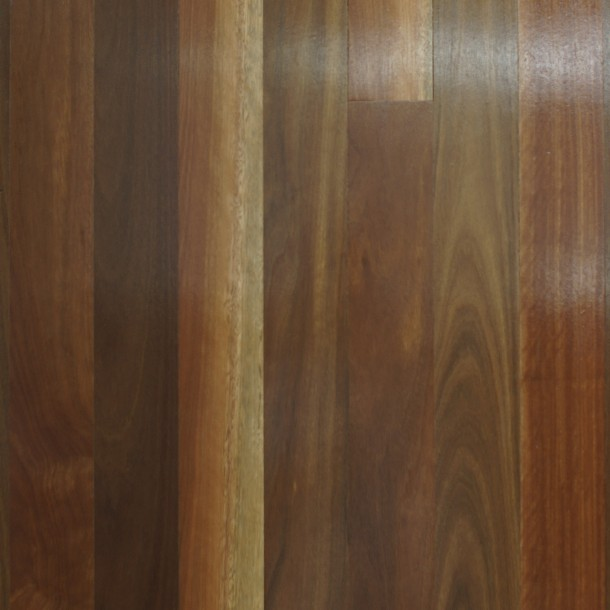 Queensland Spotted Gum Select Grade